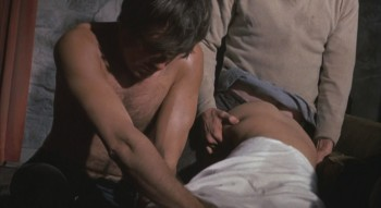 straw dogs sex scene